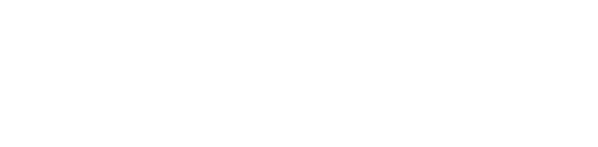 Vauldex Technology